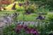 Garten_Frühling2